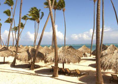 86-p-palma-real-beach-Copy